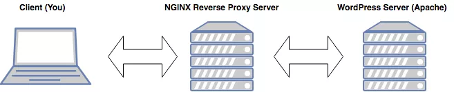 Prototypical NGINX reverse proxy diagram