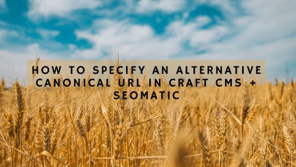 How to Specify an Alternative Canonical URL in Craft CMS + SEOmatic